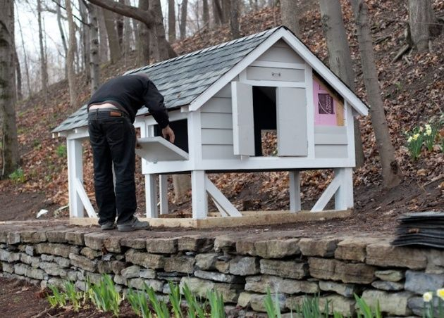 how to build a chicken coop manual