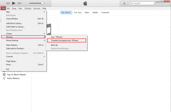 manually sync iphone with itunes