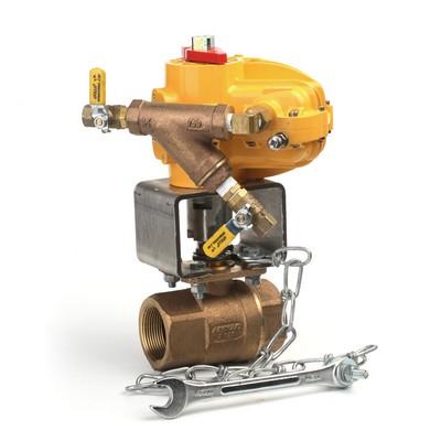 swing check valve installation manual